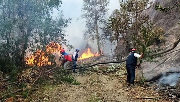 Incendios forestales afectan a cinco áreas naturales protegidas