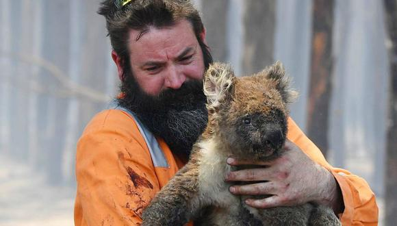 El rescatista Simon Adamczyk sostiene un koala quemado en Cape Borda en Kangaroo Island. (Foto: DAVID MARIUZ/EPA/AAP)