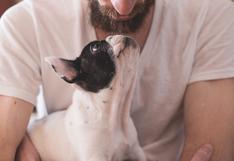 ¿Desde hace cuántos miles de años conviven los perros y los humanos? Esto dice el análisis de ADN