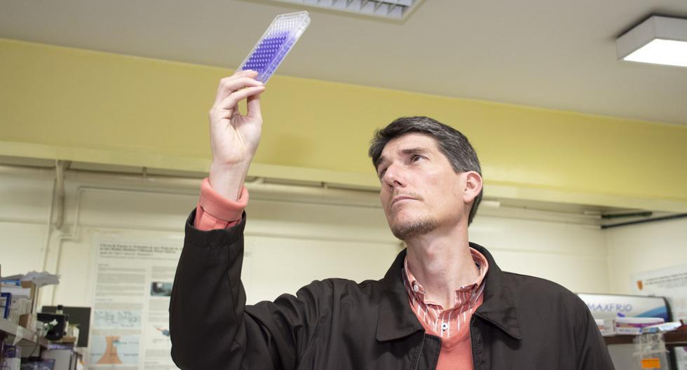 El doctor Daniel Guerra, de la Universidad Peruana Cayetano Heredia, lidera una investigación cuyo objetivo es descifrar la manera en que se comunican las bacterias. (Foto: Concytec)