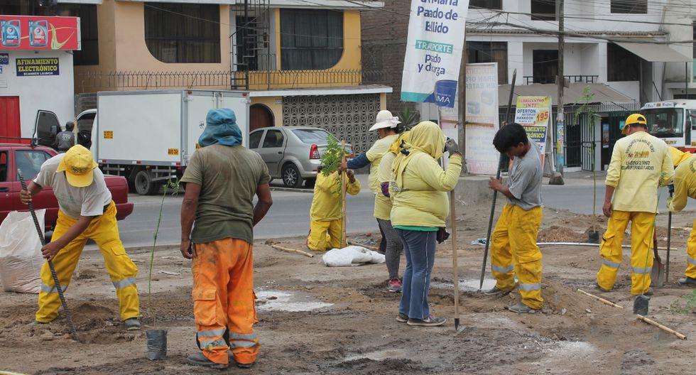 Recuperación de áreas verdes en Villa María del Triunfo (Foto: Municipalidad de VMT)