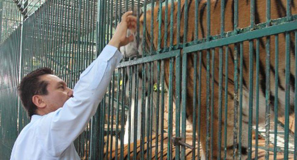 México: rescatan más de 100 animales de zoológico de diputado