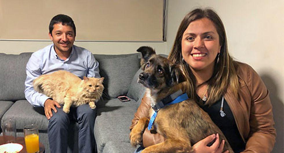 Mientras se preparan para postular a un Master en el extranjero, Jocelyn Nogueira y Renato Bellido usan estos meses para darle un hogar a Chester y rehabilitarlo. (Foto: Andrea Carrion)