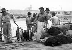 La pesca del día en Huanchaco