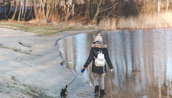 Al ver a su perro hundido en el hielo y sin poder volver a la orilla, Alina no lo pensó dos veces y se lanzó a la frías aguas de la laguna. (Foto: Pixabay/ Referencial)