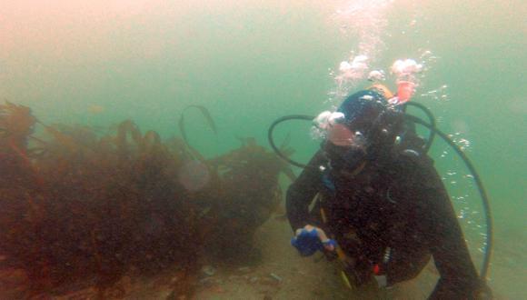Expertos darán conferencia sobre arqueología subacuática