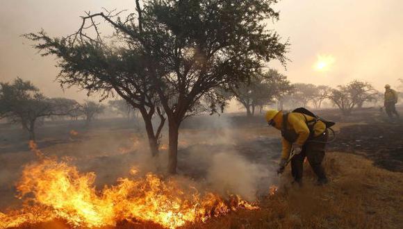 Chile en alerta debido a humo provocado por incendio forestales