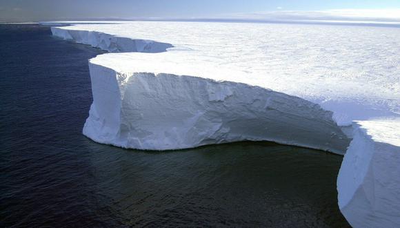 Las criaturas fueron halladas debajo de las plataformas de hielo flotantes de la Antártida. (Pixabay)