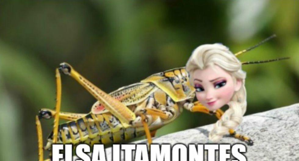 """En el primer día del año, las redes sociales se 'inundaron' de imágenes de Elsa con cientos de objetos que inician su nombre con """"Sa"""". (Foto: Twitter)"""