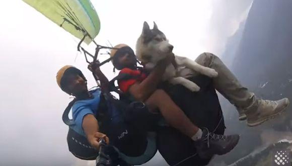 El video de un perro siberiano que vuela en parapente junto a su amo y un instructor se ha convertido en viral en YouTube   Foto: Captura de video / Newsflare