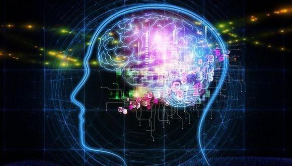 Estudio indica que no hay cerebros masculinos o femeninos