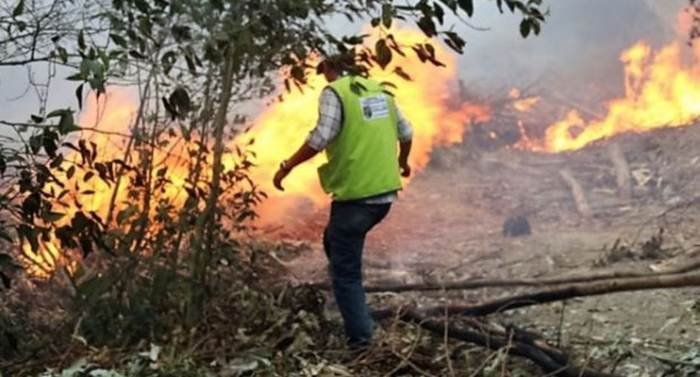 Lambayeque: incendio amenaza a moradores de tres distritos - 1