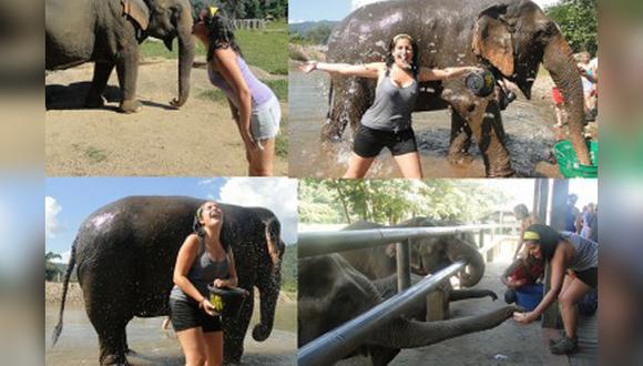 [Blog] Una experiencia para recordar al lado de elefantes