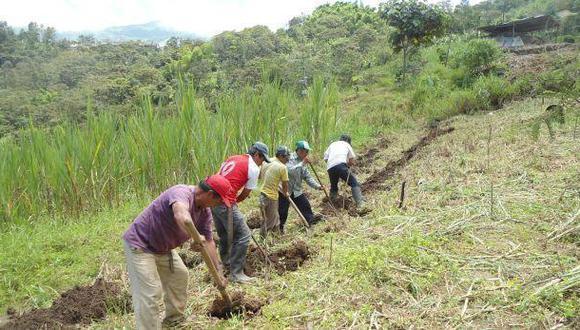 Exportaciones agrarias sumaron US$ 2.702 millones hasta julio