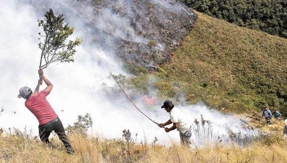 Logran controlar incendios en 4 áreas naturales protegidas