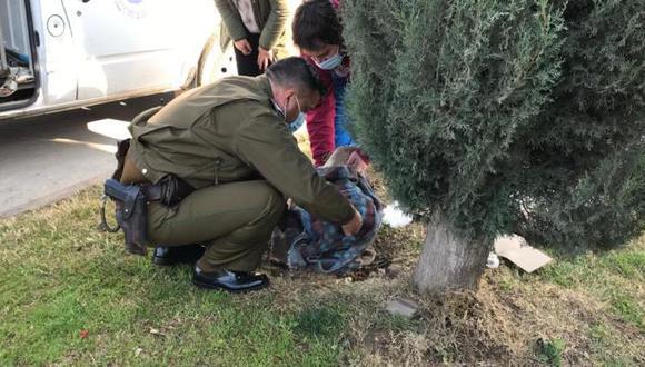 Un efectivo policial en Chile rescata a perrito lesionado. (Foto: El Rancagüino)