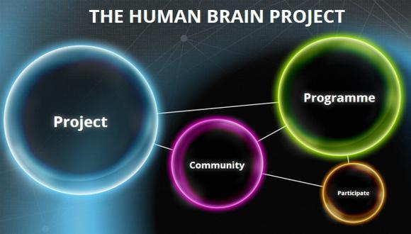 Científicos europeos critican proyecto sobre el cerebro