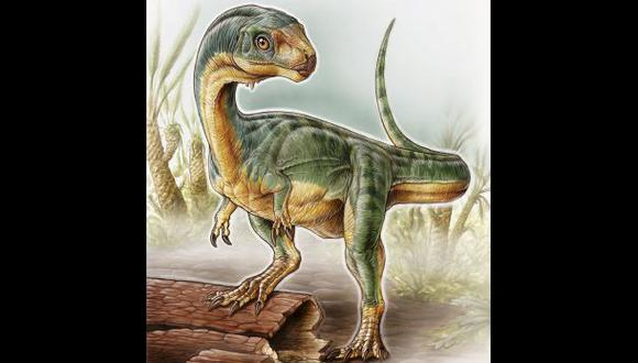 Extraño dinosaurio sorprende con extraña mezcla de rasgos