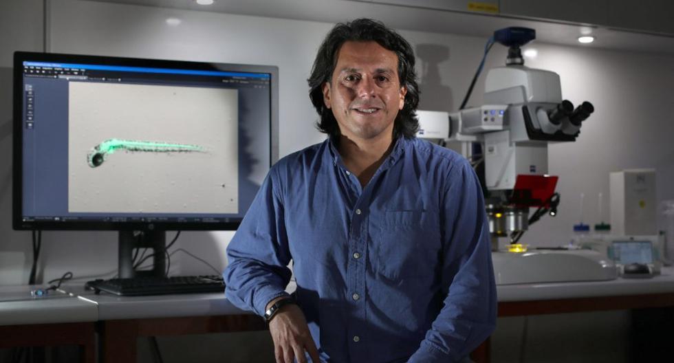 El doctor Edward Málaga Trillo fue uno de los que impulsó la utilización de los laboratorios de última generación de las universidades peruanas para realizar más diagnósticos de Covid-19. (Foto: Juan Ponce / El Comercio)