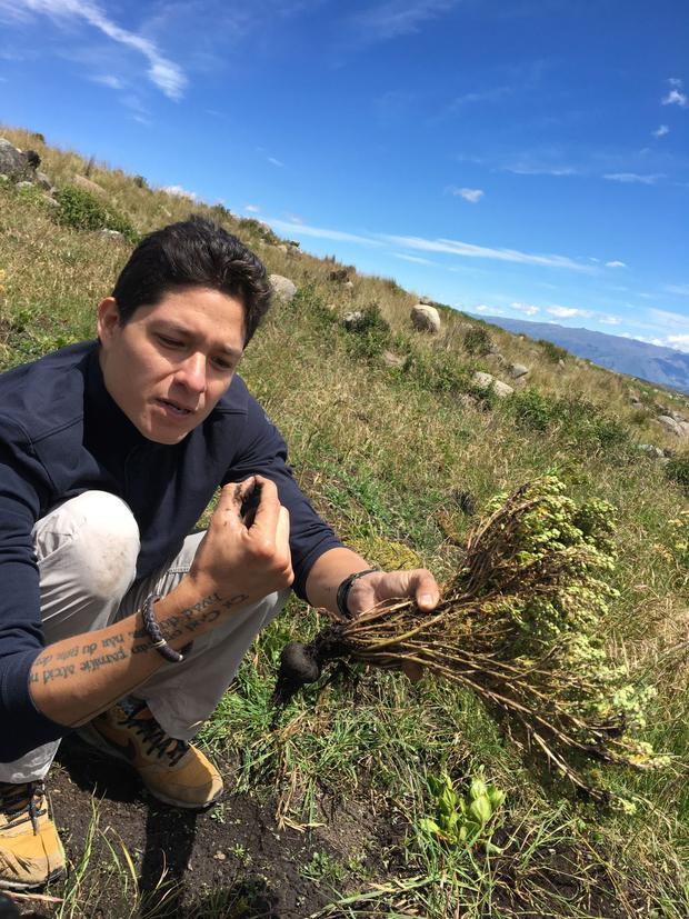 Cocinero Palmiro Ocampo en visita a un semillero de maca en Abancay. (Foto: Filfilms)