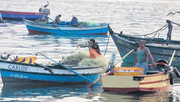 Pesca en la costa chorrillana enfrenta una dura batalla