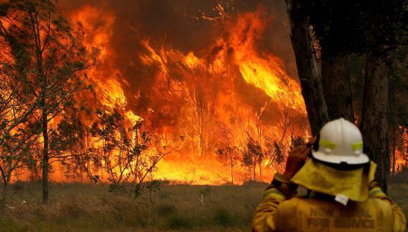 Un bombero observa el progreso de los incendios forestales en Old Bar, Nueva Gales del Sur, el pasado 9 de noviembre. (Reuters)