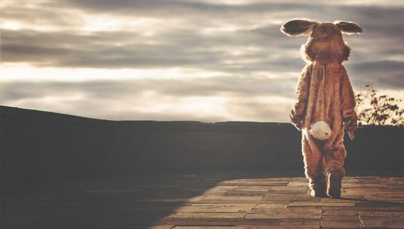 Una trifulca tuvo como participante al 'Conejo de Pascua'. (Foto: Pixabay/Referencial)