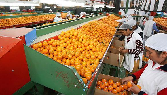 Producción nacional de mandarina crecerá 8,5% en el 2014