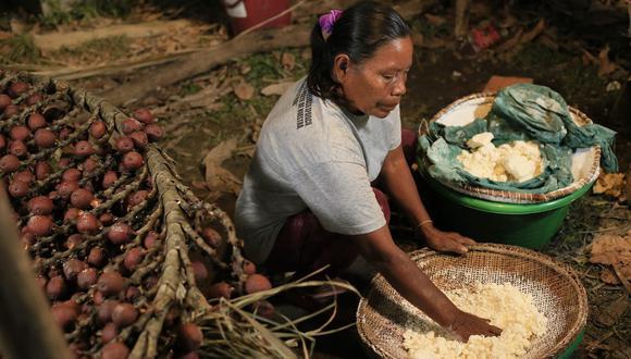 Los recursos propios del bosque en el Área de Conservación Regional Ampiyacu Apayacu fueron la salvación en esta pandemia. Foto: IBC.