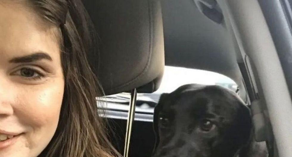 Max, la mascota de Emily cuya historia es viral en redes sociales.