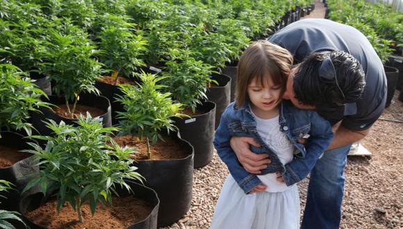Matt Figi abraza a la pequeña Charlotte, de solo 7 años, que sufre de una enfermedad muy rara que solo ha sido controlada usando una cepa de marihuana. Ahora ellos la cultivan con fines medicinales. (Foto: AP)