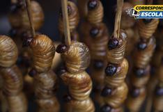 El suri amazónico: ¿por qué podría ser el ingrediente del futuro en la mesa peruana?