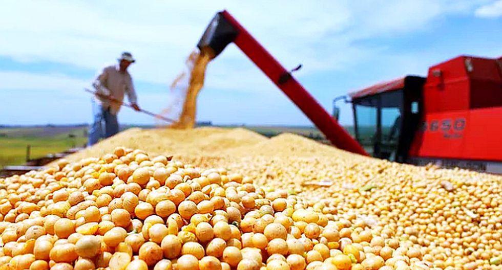 El Senasa adoptó esta medida para revisar y actualizar los requisitos de importación suscritos con el Senasag Bolivia. (Foto: AP)
