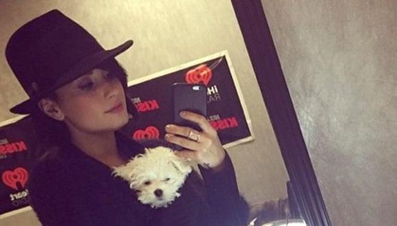 Twitter: Demi Lovato pide consejos para entrenar a su perro