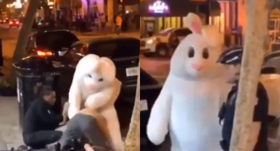 Este conejo de Pascua se enfrentó en una brutal batalla ante otra persona por defender a su amigo. (Foto: Twitter)
