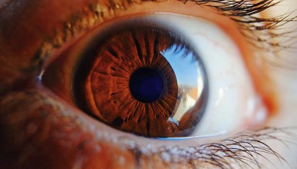 Día mundial de la visión hoy 8 de octubre. Foto: (Pixabay / referencial)