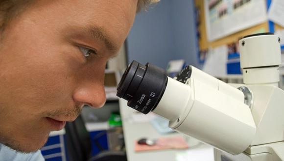 """Este método consiste en cortar el ADN en un lugar preciso mediante una enzima, de ahí su nombre de """"tijeras moleculares"""". (Foto: Pixabay)"""