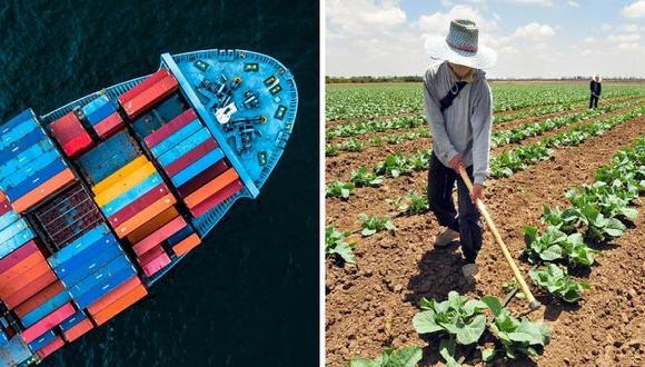 Representantes del sector agrario reclaman restablecer los aranceles a los productos agrícolas.