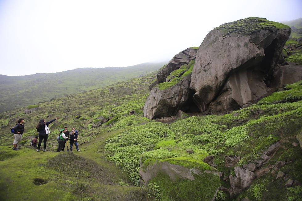 Lomas de Mangomarca: un nuevo destino para hacer trekking en Lima (Foto: Jessica Vicente).