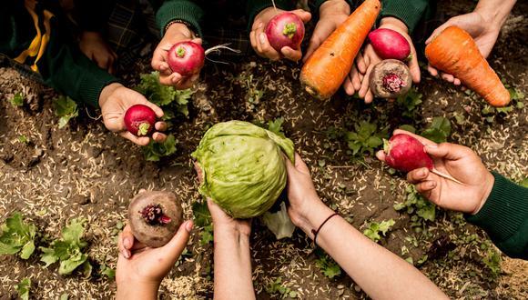 La educación alimentaria como política pública es uno de los grandes retos de la gastronomía que se debatirán en este congreso multidisciplinario. (Foto: Karen Zárate/El Comercio)