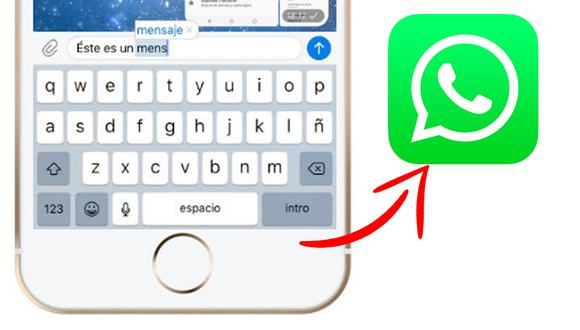 Conoce todos los pasos para que el auto corrector no se haga presente en tus conversaciones de WhatsApp. (Foto: MAG)