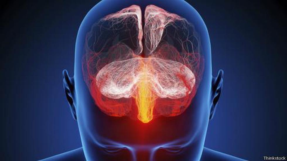 ¿Son realmente diferentes los cerebros de hombres y mujeres? - 1