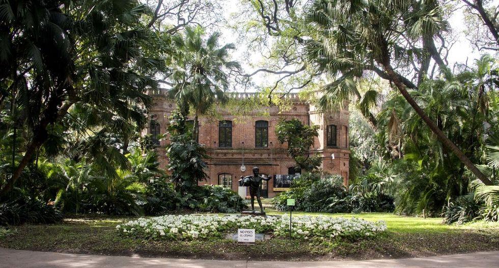El sendero de los Reyes del Jardín Botánico. (Foto: Ente de Buenos Aires)