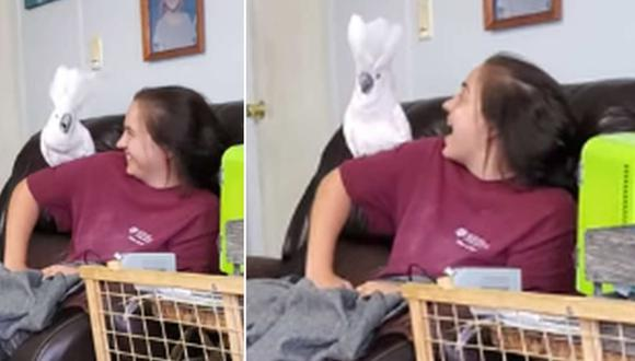 Una joven fue captada gritando con su cacatúa con el fin de averiguar quién lo hace más fuerte. (Foto: ViralHog / YouTube)