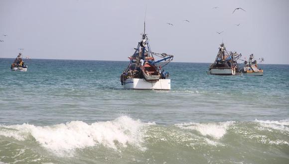 Imarpe presentará los resultados de la investigación al Despacho Viceministerial de Pesca y Acuicultura. (Foto: GEC)