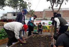 Casa de Todos: ¿por qué se les enseñó a cultivar y cosechar a los albergados? | VIDEO
