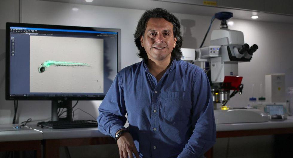Investigador de la UPCH Propone usar laboratorios de universidades para más diagnósticos del Covid-19