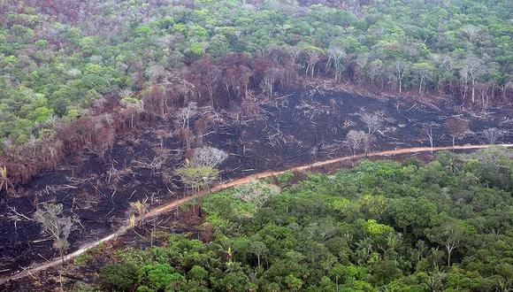Deforestación en el departamento del Guaviare, Colombia. Foto:Fundación para la Conservación y el Desarrollo Sostenible (FCDS).