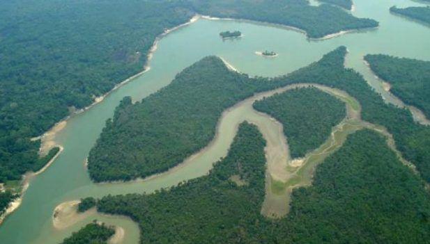 El llamo amazónico de Ucayali es una nueva frontera para la exploración minera formal. (Foto: Inforegión)