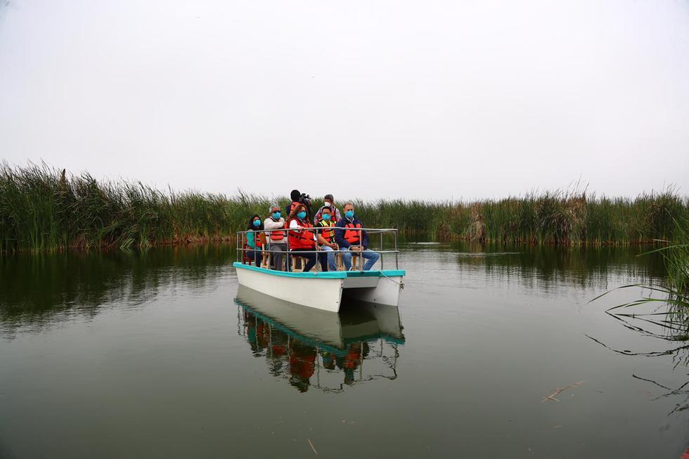 La Municipalidad de Lima informó que desde este sábado 31 de octubre los pantanos de villa reanudarán sus actividades bajo protocolos de bioseguridad. (Foto: HugoCurotto / @photo.gec)